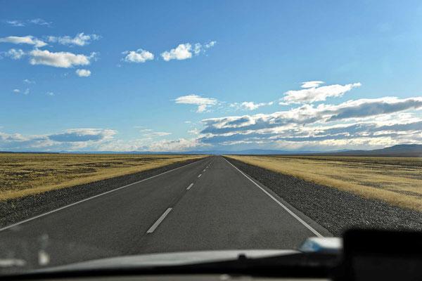 Unendliche Pampalandschaft
