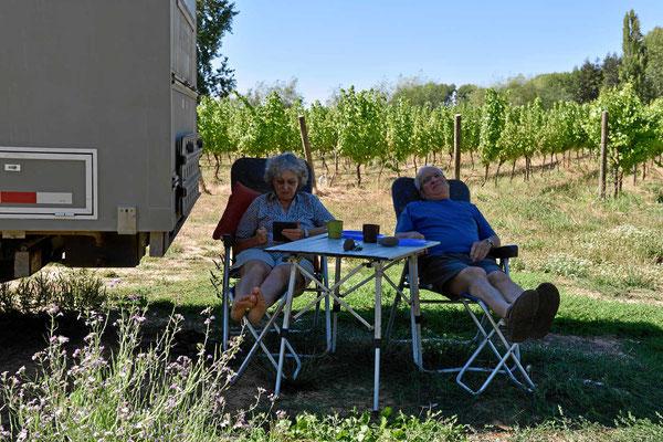 Relaxen im Weingut Chillan.