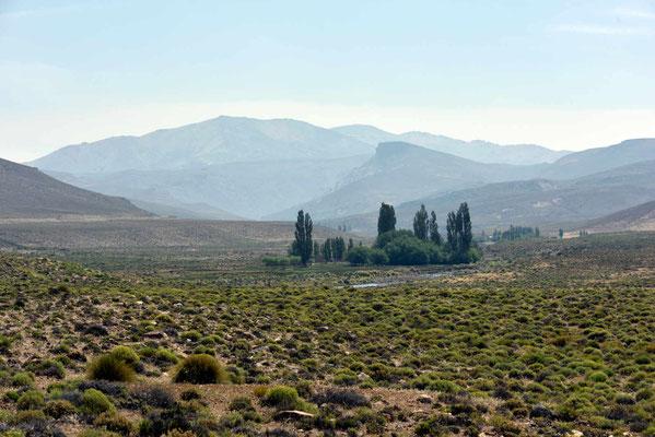 Es ist eine kahle Landschaft. Bäume wachsen nur bei den Estancias.