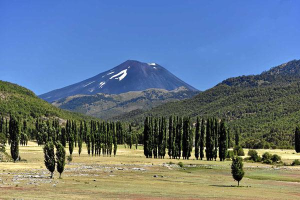 Blcik zurück auf den Vulkan Lonquimay.