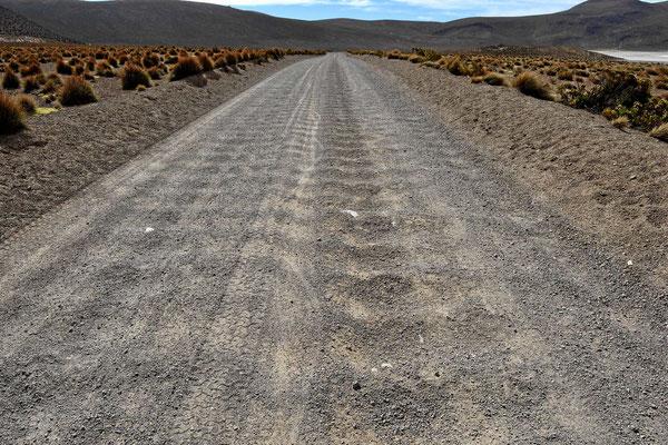 """Wellblech - wir """"lieben"""" es. Bei Sand kann man dem mit 70 kmh entfliehen, bei Schotter ist es praktisch nicht möglich."""