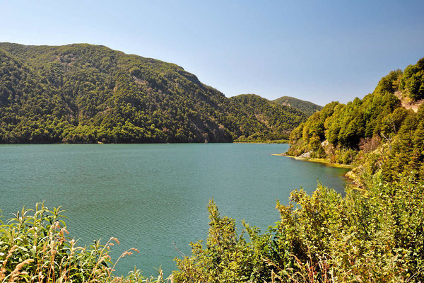 Der Lago Quillehue im Natioonalpark.