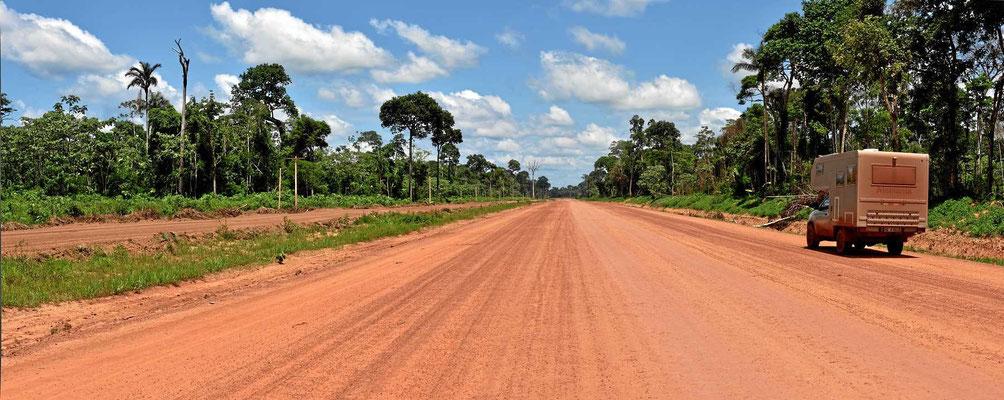 So eine Straße ist der Tod jedes Urwalds.