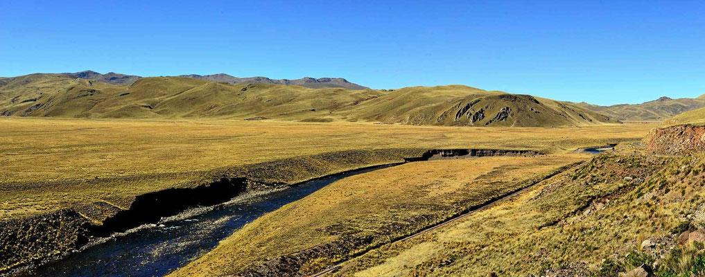 Puna-Landschaft im Altiplano.