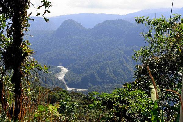 Der Rio Quijos kurz vor bevor er Amazonien erreicht.