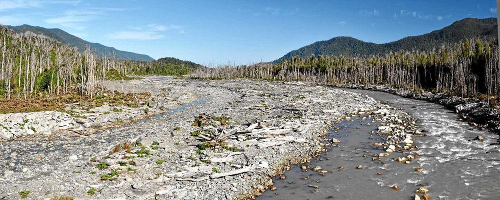 Díe Ungebung des Rio Rayas hat sichtbar unter dem Vulkanausbruch des Chaiten in 2008 gelittten