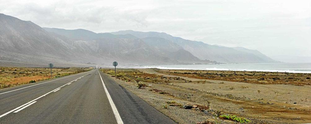Die Pazifikküste im Küstennebel.