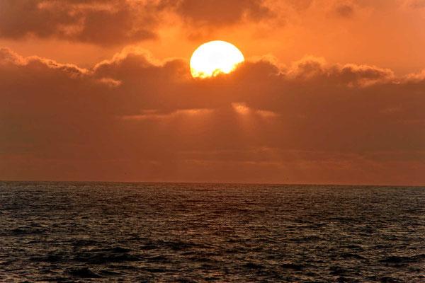 Abendsonne am Meer.