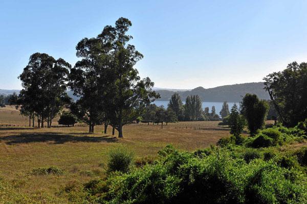 """Typischer """"Parklandschaft"""" im Bereich der Seenplatte."""