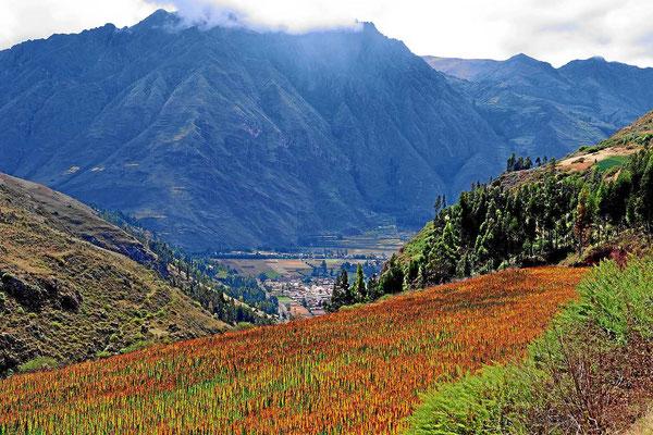 """Ein erster Blick ins """"heilige Tal der Incas"""", das Tal des Urubamba."""