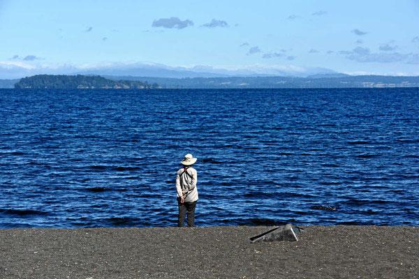Blick über den See Calafquen.