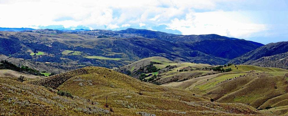 Die Weiterfahrt gen Süden führt durch ein leeres baumarmes Land.