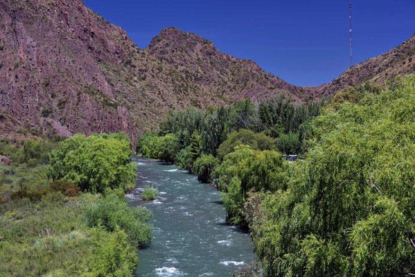 Der Rio Atuel. Ein richtig hübsches Gewässer, eine Flussoase, untgen am Fluss ist alles grün, oben sind die Berge total kahl.