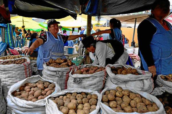 Der Obst- und Gemüsemarkt von Gualaceoa.Hier gibt es dutzende von verschiedenen Kartoffelarten.