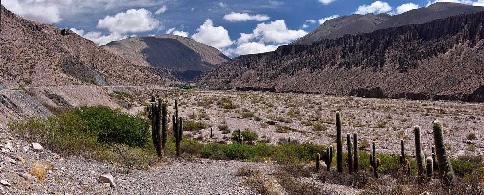 Es geht weiter das Flusstal des Rio Pumamarca aufwärts.