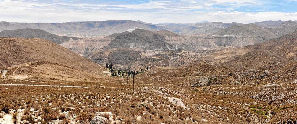 Oase in der Wüste Atacama. Auf dem Weg nach Arica fahren wir durch teilweise vegetationslose Wüstenlandschaft.