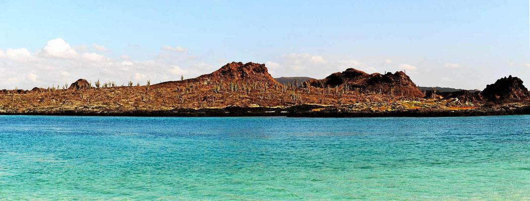 Die Galapagos sind felsige Inseln mit wenig Pflanzen.