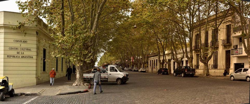 Viel Straßen in Colonia sind Alleen, meistens mit Platanen, das sieht richtig hübsch aus.