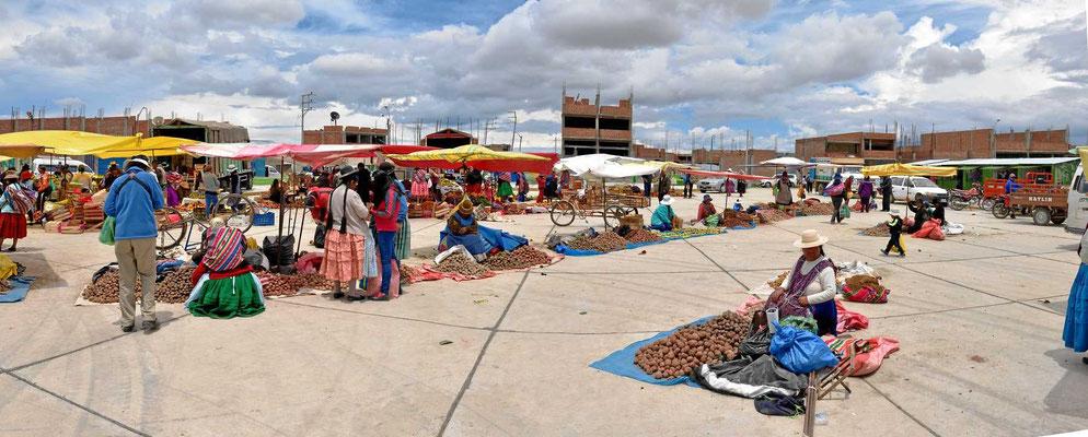 Markt am Titicacasee. Wir sind im Kartoffelland, alles unterschiedliche Kartoffeln.