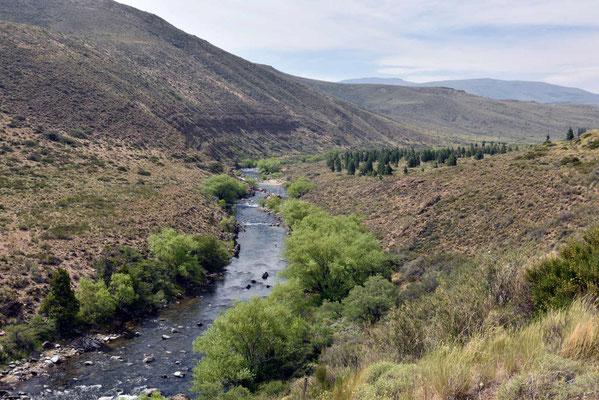 Und Bäume wachsen bei den wenigen Flüssen, die Gegend ist ziemlich trocken.