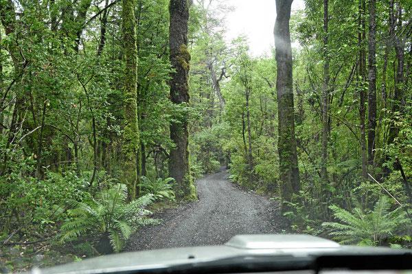 Wir verlassen den Pumlinpark im Regen.