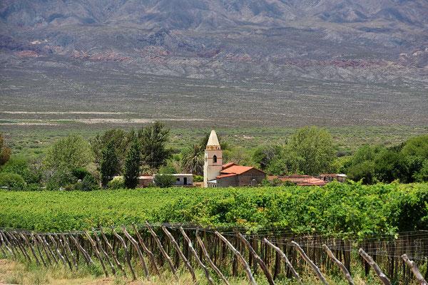 Man fährt deshalb durch eine Weinlandschaft.