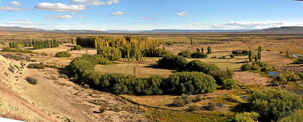 Wo Bäume sind, kann auch eine Estancia sein.