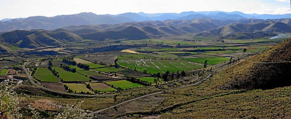 Oasenlandschaft nahe Arequipa.