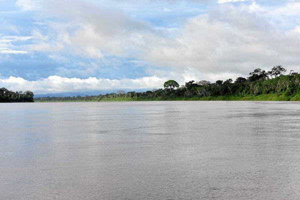 Der Rio Beni in all seiner Schönheit.