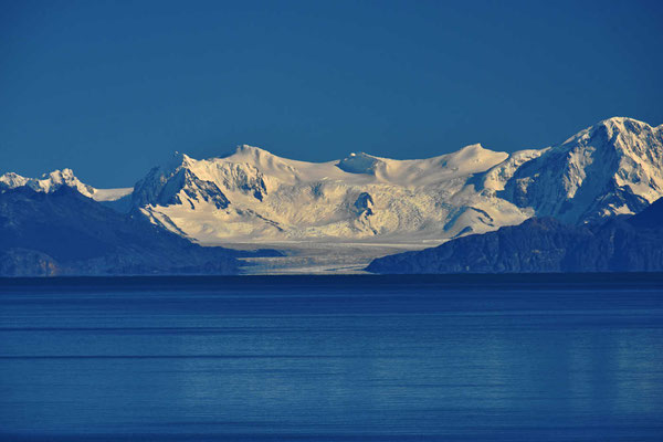 Der Gletscher Viedma.