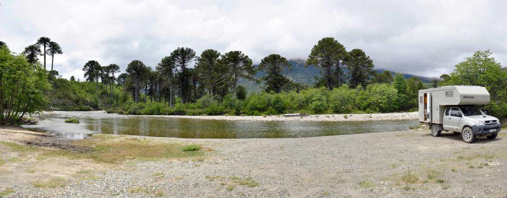 Mittagsrast am Flussufer bei den Araukarien.