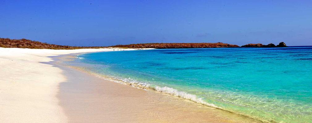 Eine der schönsten Strände von Galapagos.