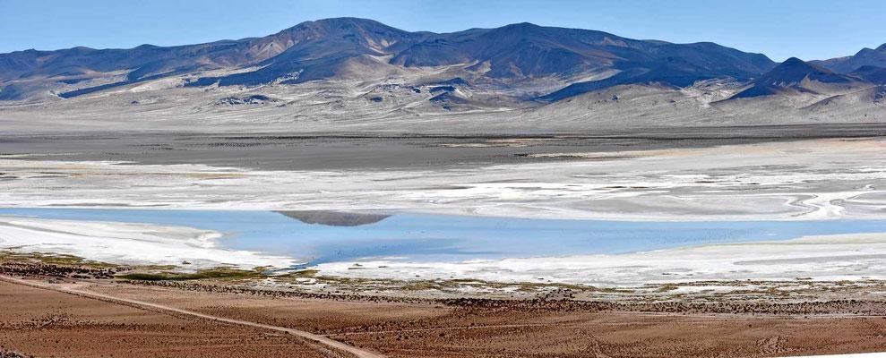 Der Salar de Huasco.