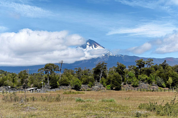 Anfahrt zum Nationalpark Conguillio, der Vulkan Llaima.