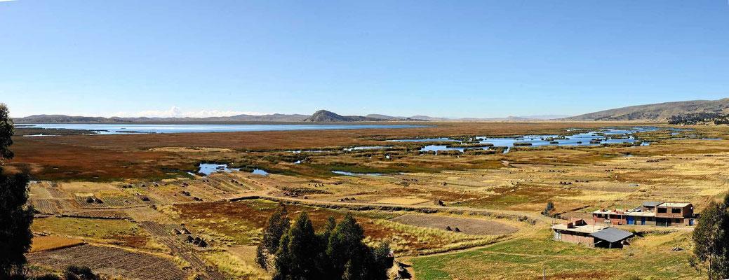 Der Titicaca-See ist hier ziemlich zugewachsen
