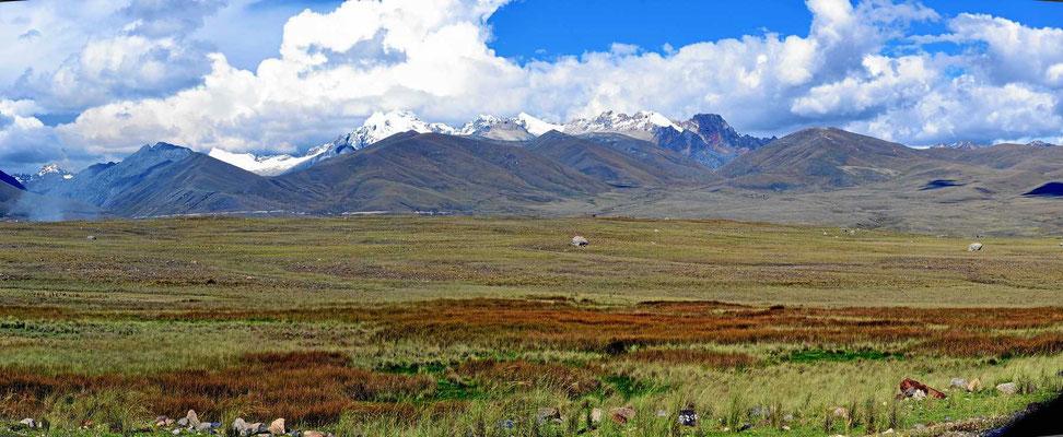 Die Puna-Landschaft in den Cordillera Blanca.