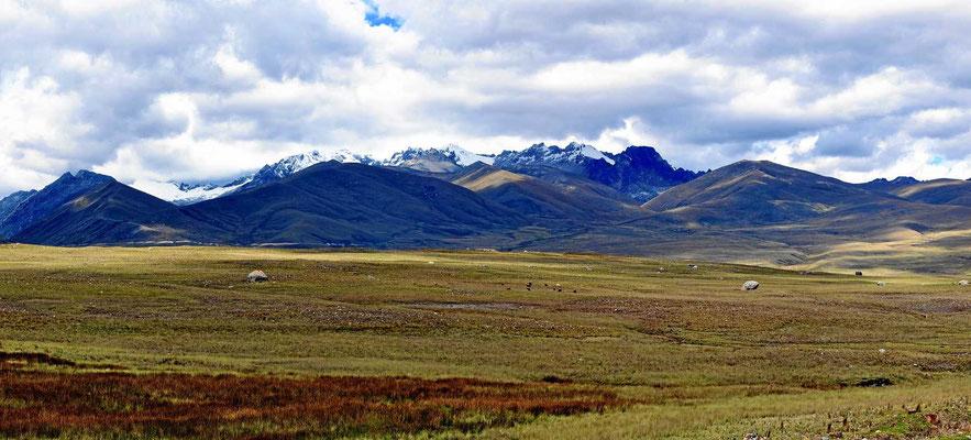 Auf dem Weg nach Chavin de Huantar - so stellen wir uns die Mongolei vor.