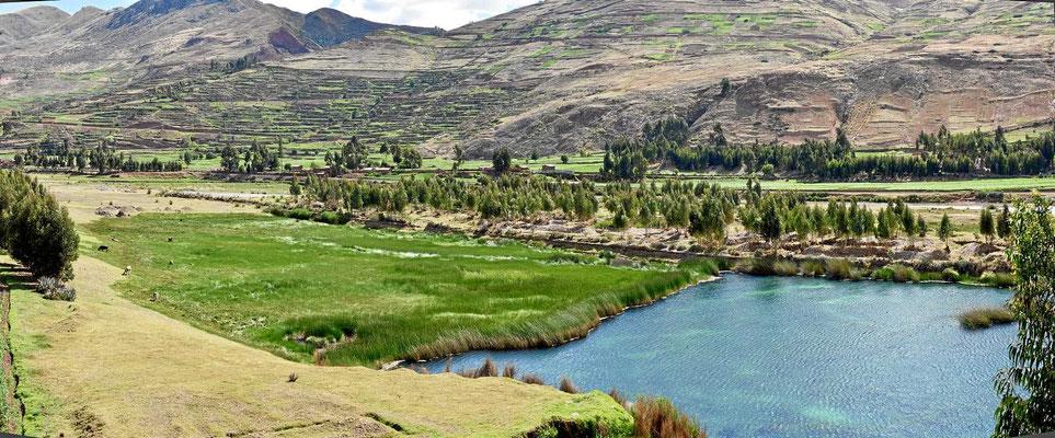 Wir fahren gen Titicacasee über sie Puna-Hochfläche.