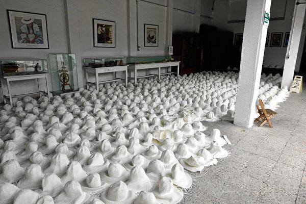 Ein Vorratslager an Hutrohlingen in der Hutfabrik in Cuenca.