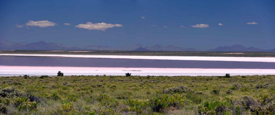 Und die rechte Seite, der See schimmert rosa, was mir zum Glück noch fehlt, sind Flamingos. Die gibt es hier leider nicht.
