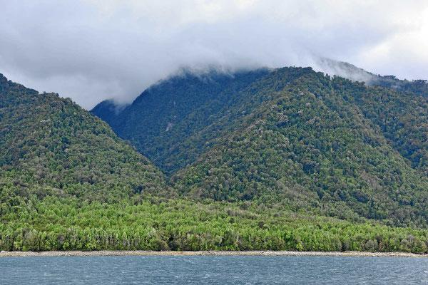 Die Berge sind bis oben hin bewaldet.