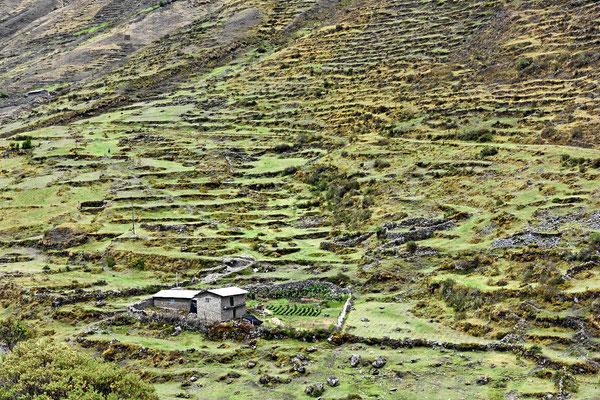 Bauernhof mit Terrassen auf 4000 m Höhe.