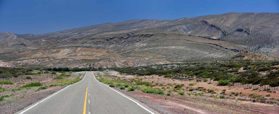 Die Landschaft zwischen Chos Malal und Las Lajas.