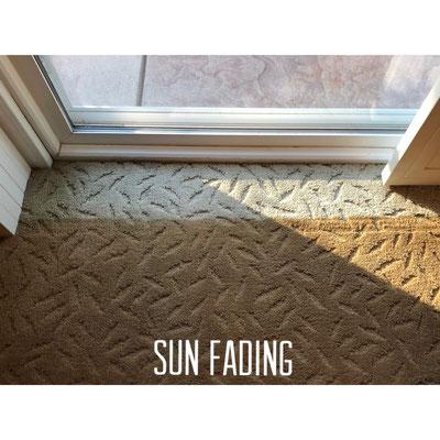 Heavily sunfaded carpet damage.