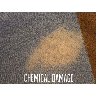 We Fix Carpet Bleach Stains Spots Carpet Dyeing By Dyebold