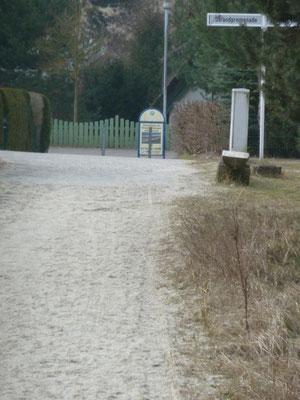 strandnah (Bothmann - Strandnahe Ferienwohnungen, Usedom)