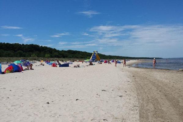 endloser Sand-Strand, nur ca. 60m zur Ferienwohnung (Bothmann - Strandnahe Ferienwohnungen, Usedom)