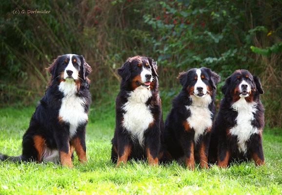 Theo, Mama Karoline, Schwester Theodora-Käthe, Oma Liese