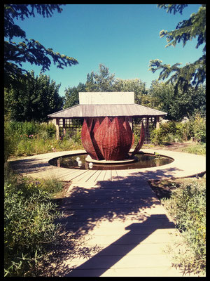 Lotus, réalisé aux jardins d'Arc et Senans ( avec l'ENOV)