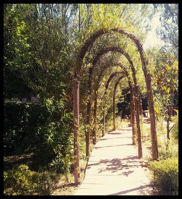 Arches, réalisé aux jardins d'Arc et Senans ( avec l'ENOV)